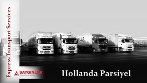 Hollanda Parsiyel
