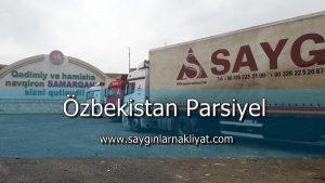Özbekistan Parsiyel