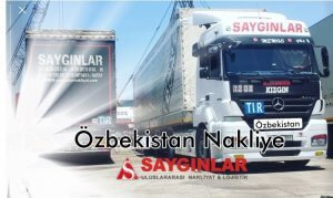 Özbekistan Parsiyel Nakliye
